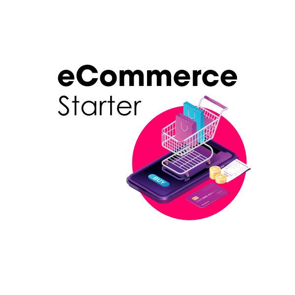 Affordable Shopify Developer eCommerce Starter Solution